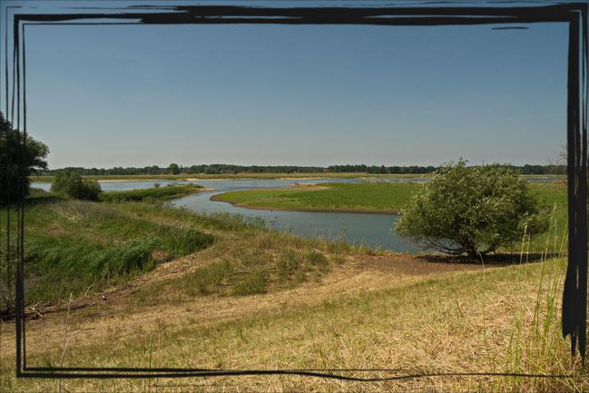 Die Elbe zwischen Kietz und Unbesandten