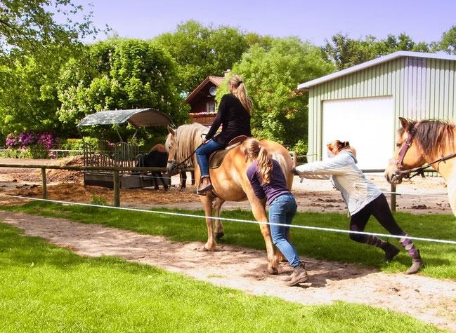 Ponyschieben