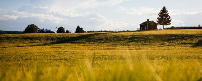 gîte rural dans la campagne pour creation de site internet gite rural par e-cime.fr