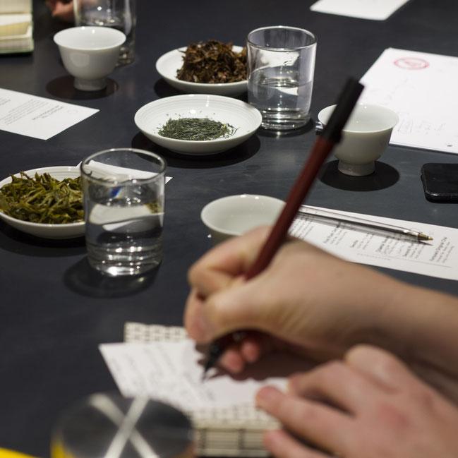 Workshop Teeverkostung tea tasting
