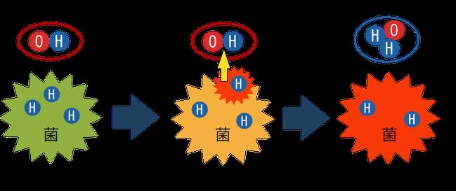 ラジカルOHによる菌の死滅原理