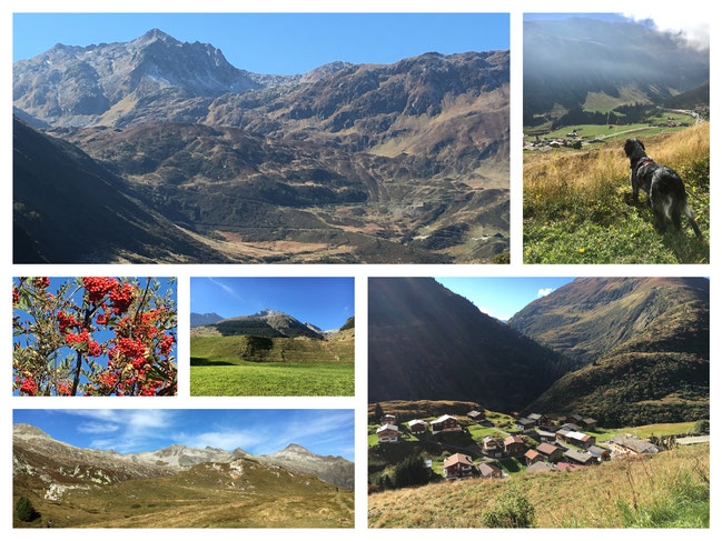 Region Oberalp/Surselva GR