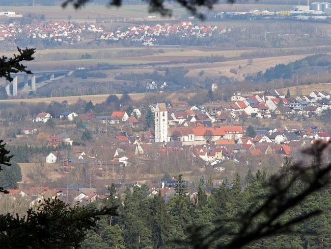 Blick auf Bergfelden (Vordergrund)