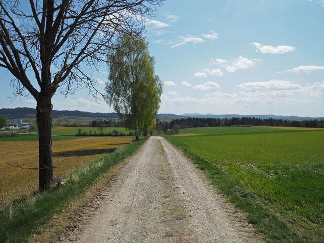 Römerstrasse von Bochingen kommend mit Blick auf Trichtingen und Mühlbachtal