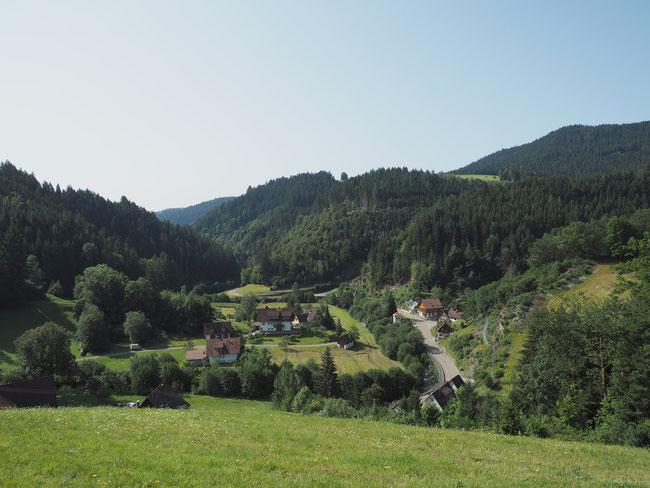 Blick auf Kaltbrunn-Vortal