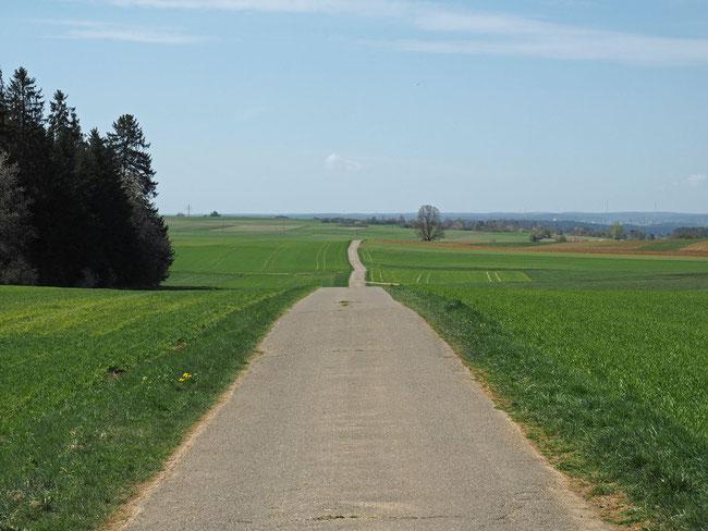 Verlauf der Straße von Hochmössingen Richtung Waldmössingen
