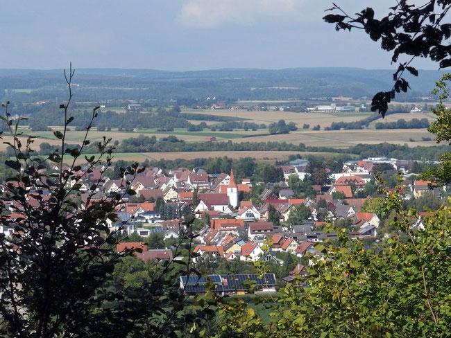 Blick auf Vöhringen (Vordergrund)