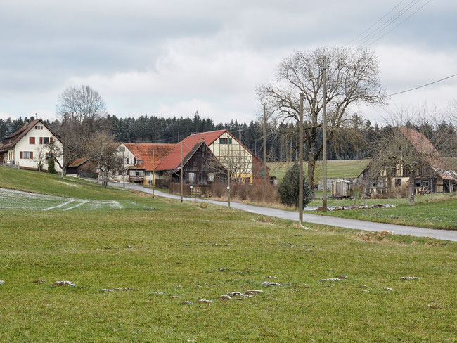 Übersicht über die Harzwaldhäuser