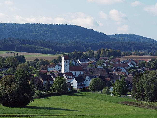 Blick auf Renfrizhausen