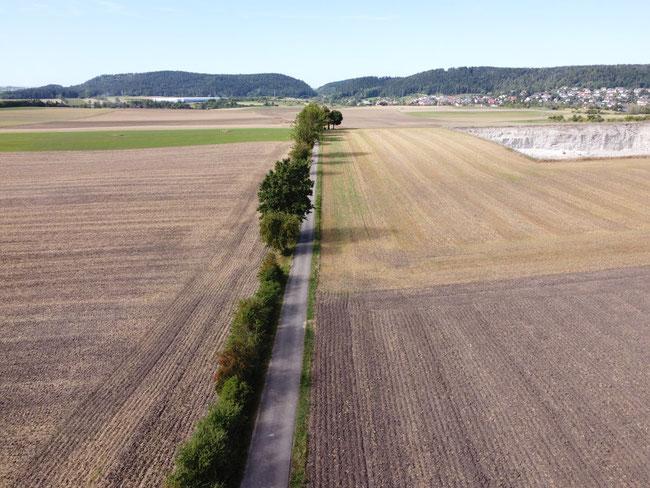 Römerstrasse zwischen Trichtingen und Böhringen, hier mit Blick auf Trichtingen