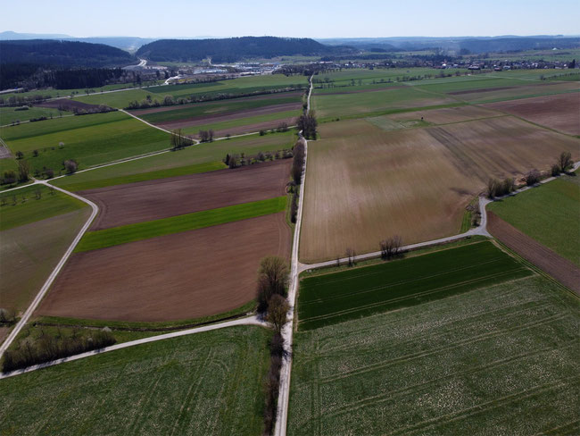 Blick von Wittershausen Richtung Bochingen - die Römerstraße ist gut erkennbar
