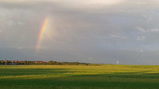 Werbebild für Ostfriesland-Wetter
