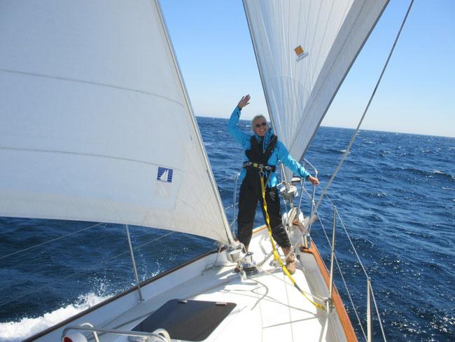 Angeber-Ute: bei Sonnenschein und mit Delfinbesuch machen die Wellen nix aus!