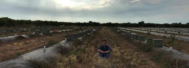 Gonzalo Urculo inmitten der Bienenvölker