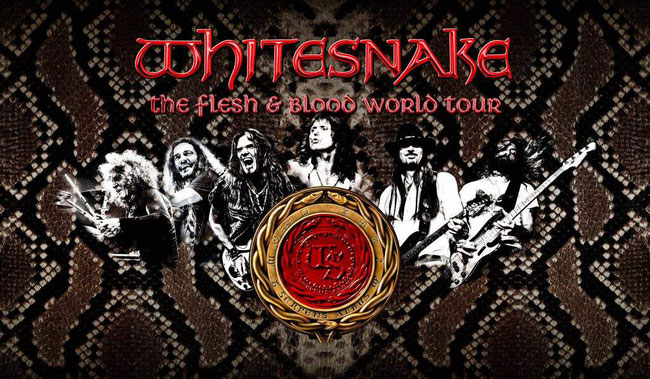 "Whitesnake the new album ""Flesh & Blood"""
