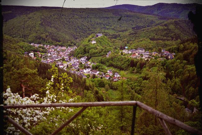 Schloss und Schwarzburg vom Trippstein