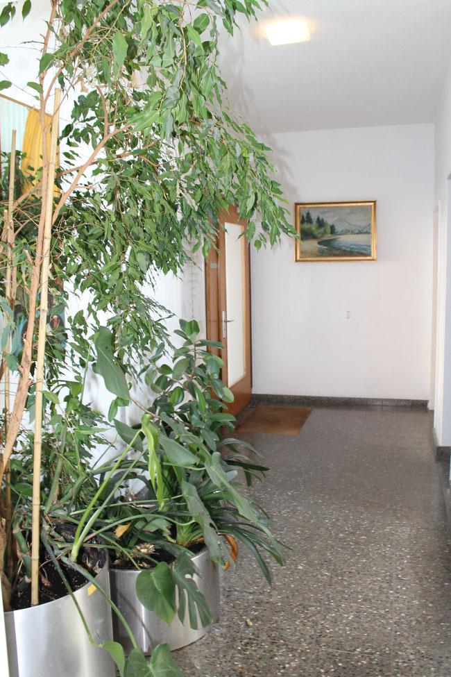 EG Hauseingang - Veloraum - Lift