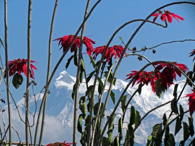 Himalaya im Sonnenschein