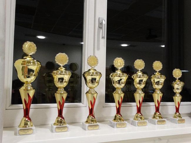 Die Pokale (ganz links: Gesamtsieger, ganz rechts: Sieger Blitzturnier)