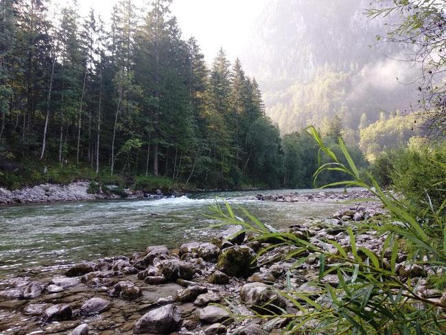 """Die Welle """"Helli Welli"""" am Campingplatz Wildalpen"""