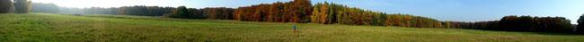 Herbst am Hammerfließ bei Templin