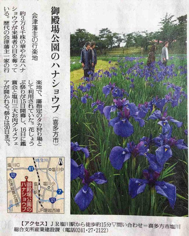 喜多方市 御殿場公園の花しょうぶ園