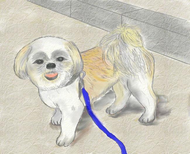 水彩8で散歩中の犬