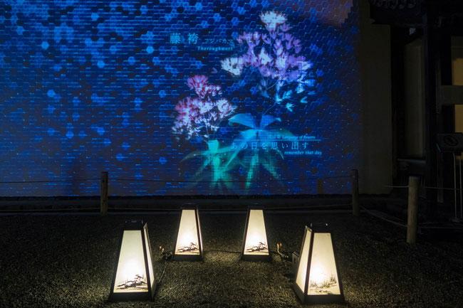 「ライトアップFLOWERS BY NAKED 2018-京都・二条城-」