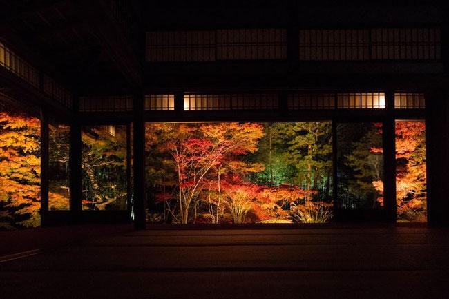 京都の紅葉ライトアップ 南禅寺天授庵