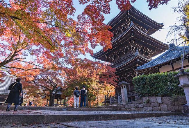 真如堂の紅葉と三重塔