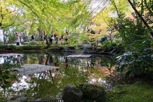 京都圓光寺紅葉2018