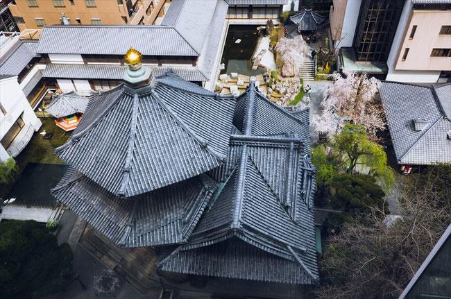 (京都桜の名所)六角堂のビルからの眺め