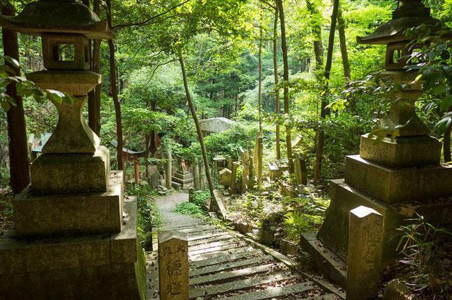 京都トレイル東山コース深草大岩神社