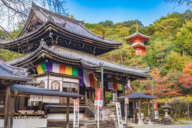 秋の今熊野観音寺
