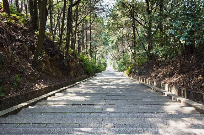 (京都桜の穴場)秀吉のお墓「豊国廟」の階段