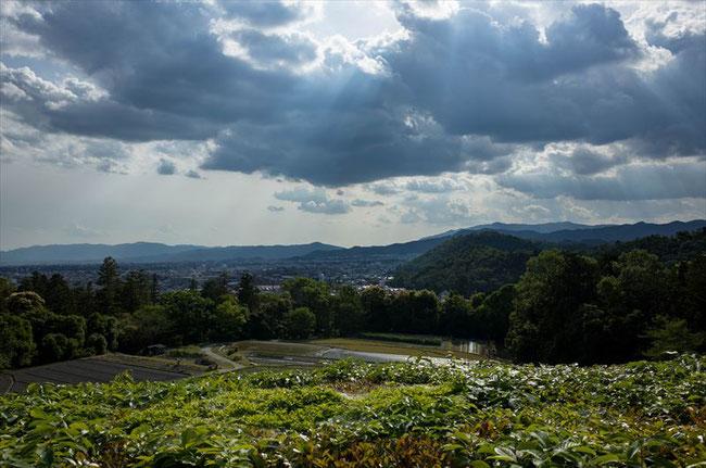 修学院離宮からの眺め
