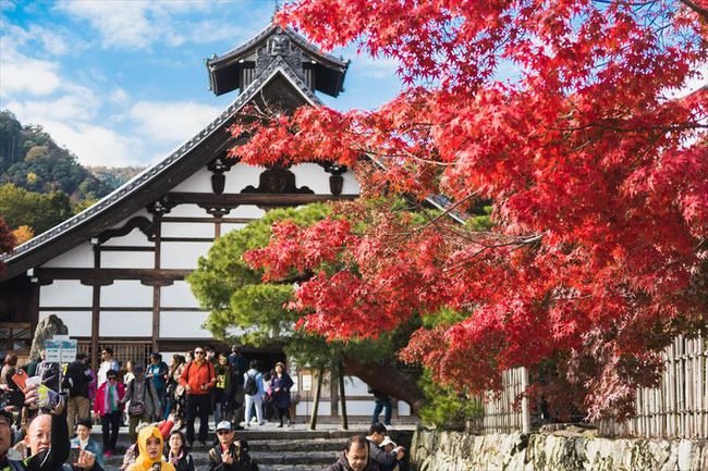 嵐山天龍寺の紅葉