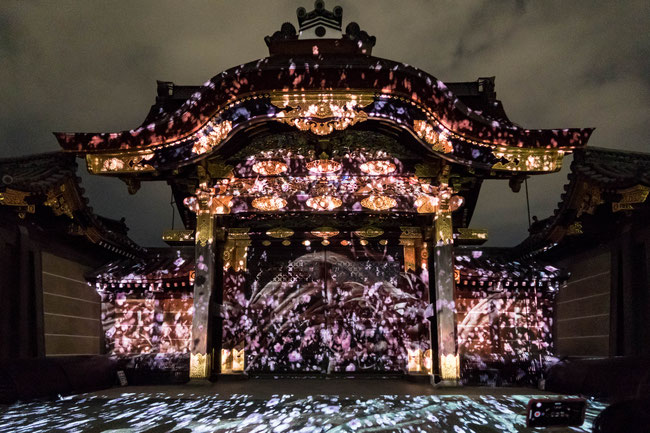 京都二条城桜祭りプロジェクションマッピング2018