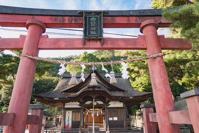 滋賀県琵琶湖「白髭神社」