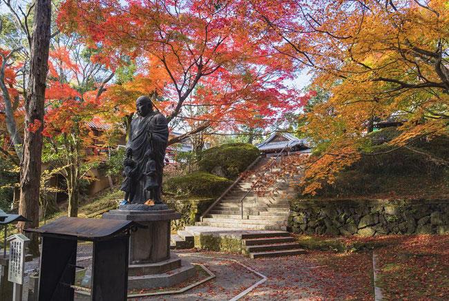 秋の今熊野観音寺の紅葉