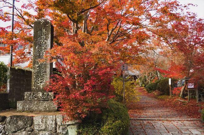 京都 常照寺の紅葉