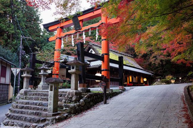 嵐山紅葉 京都トレイル西山コース 一の鳥居 平野屋