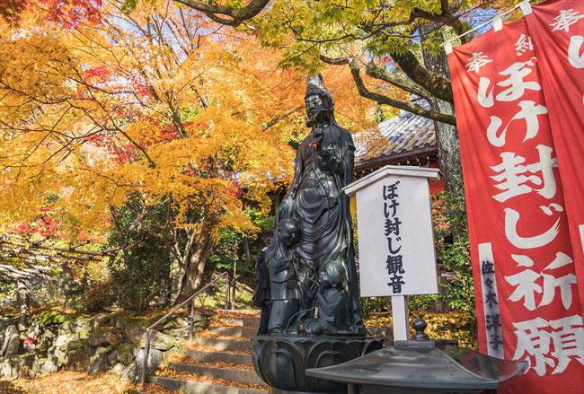 秋の今熊野観音寺のぼけ封じ観音