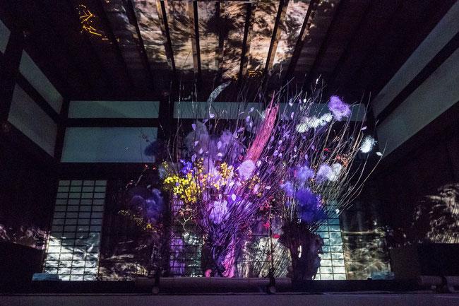 「ライトアップFLOWERS BY NAKED 2018-京都・二条城-」池坊専好さんの作品