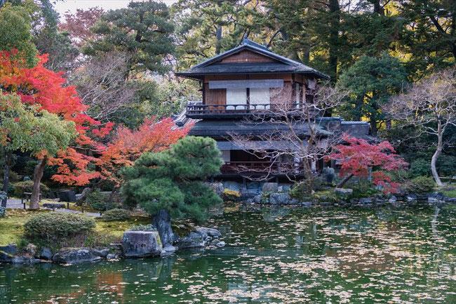 京都御苑の拾翠亭の秋の紅葉