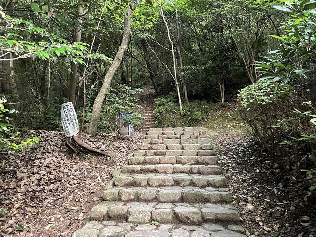 双ヶ岡 階段