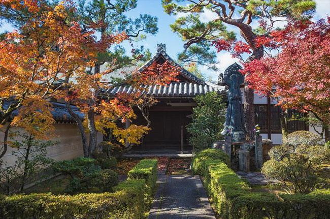 妙心寺の紅葉