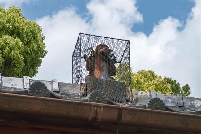 赤山禅院・鬼門の守り 金網に入った猿
