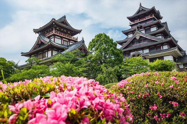 京都トレイル東山コース深草伏見桃山城