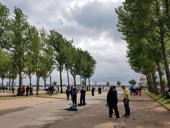 4.Fehmarn Open.  Spielen unter Bäumen im Hafen.